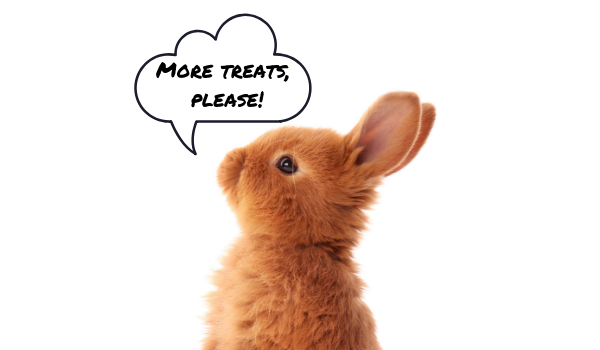 What are the best treats for rabbits and guinea pigs
