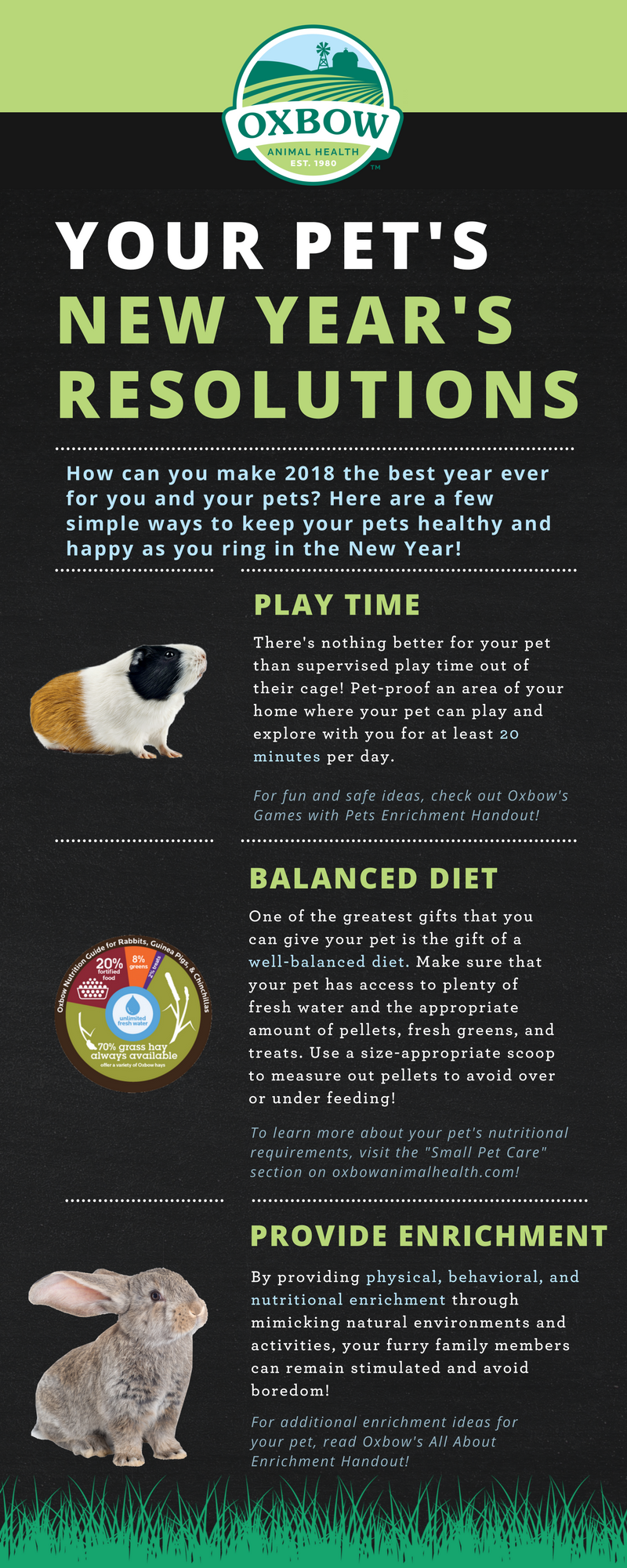Making 2018 the Best Year for You and Your Pets