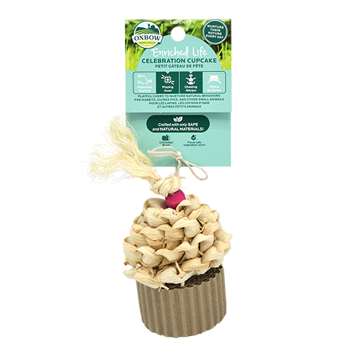 Enriched Life - Celebration Cupcake