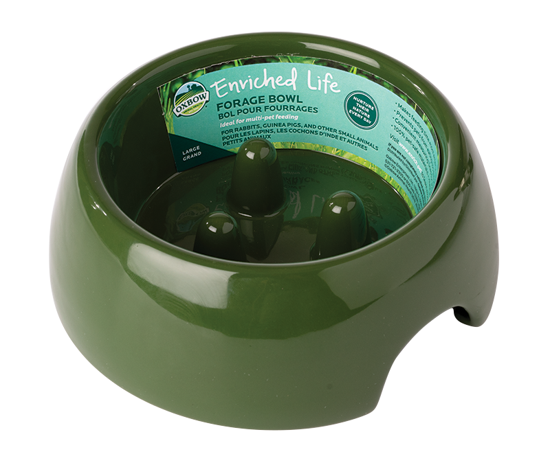 Enriched Life - Forage Bowl (Large)