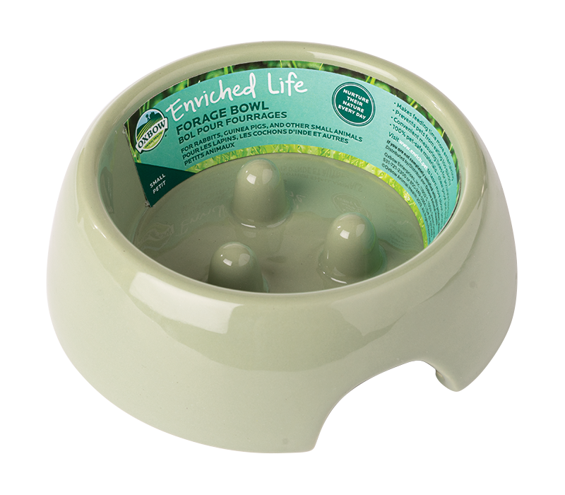 Enriched Life - Forage Bowl (Small)