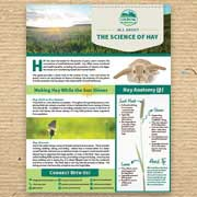 All About The Science of Hay (Article)