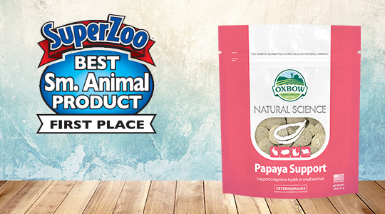 Papaya Support - Best New Product at SuperZoo!