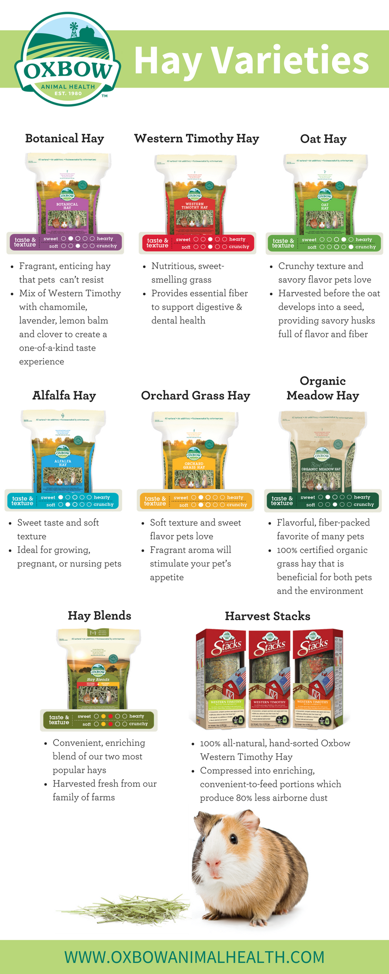 Hay Varieties (Infographic)