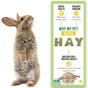 Why Pets Need Hay (Infographic)