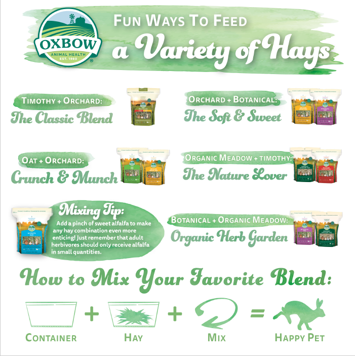 Fun Hay Variety Combinations - Infographic