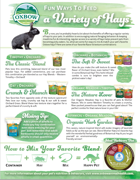 Fun Ways to Feed A Variety of Hays (Handout)